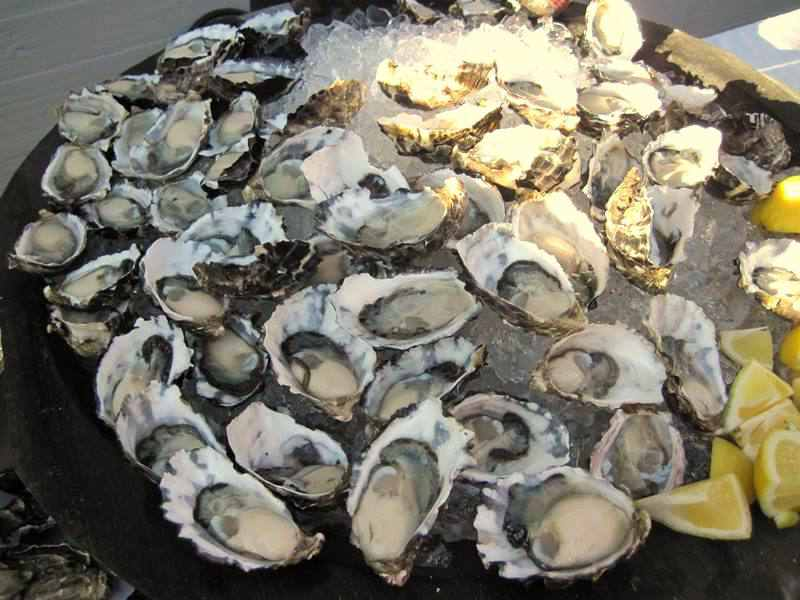 Signature oysters,Australia's Oyster Coast,rick stein,tallwood,cupitt's,oysters,restaurants,Mollymook,South Coast
