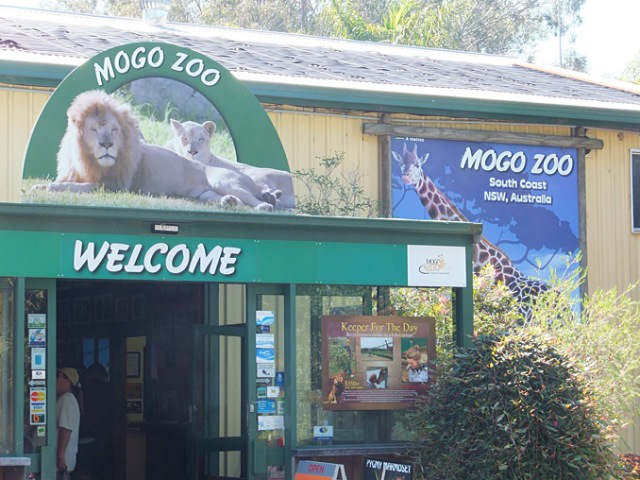 Mogo Zoo,Mollymook,Milton,Ulladulla,Tyler's Pantry,Mogo,restaurant,things to do