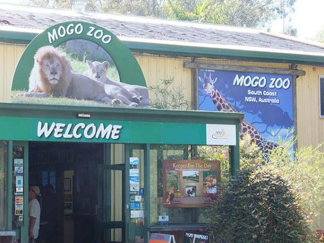 Mogo Zoo,Mollymook,Milton,Ulladulla,Tyler's Pantry,Mogo,restaurant,things to do