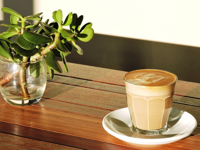 Driftwood cafe,driftwood,cafe,milton,nsw,chambers