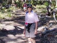 Walks,hiking,Mt Bushwalker,Pigeon House,mountain,beach walks,beach